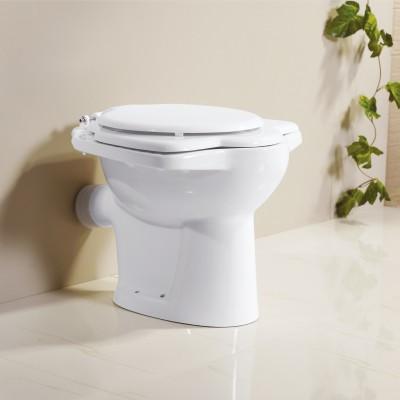 Floor Mounted Toilet